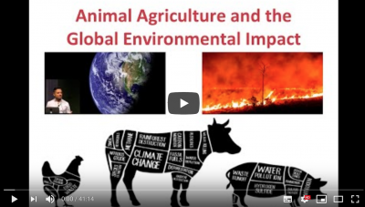 The Earth is on Fire: Animal Agriculture and the Global Environmental Impact by Dr Tushar Mehta