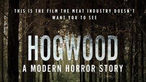 Hogwood - a modern horror story